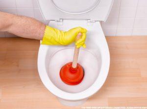 Как прочистить унитаз от засора без помощи сантехников